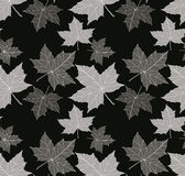 Vector seamless black and white pattern Stock Image