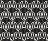 Vector Seamless  Black and White Stripes Line Geometric Hexagonal Optical Illusion Pattern Royalty Free Stock Photo