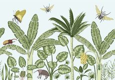 Vector seamless border background with tropical plants and insects.