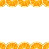 Vector seamless border of orange slice. Citrus background Royalty Free Stock Image