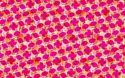 Vector seamless bright red and pink pattern Stock Photos
