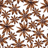 Vector seamless cardamom pattern Royalty Free Stock Photo