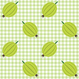 Checked pattern with gooseberry. Vector seamless checked green and white pattern with gooseberries Royalty Free Stock Image