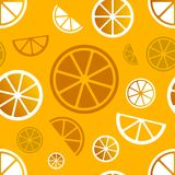 Vector seamless citrus pattern. Eps10 Royalty Free Stock Photos