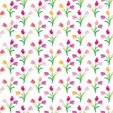 Vector seamless color pattern of tulips. Vector illustration seamless pattern tulips Stock Photos