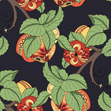 Vector Seamless Colored Fruit Pattern Stock Photo