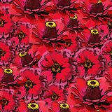 Vector seamless colorful pattern with red flowers Stock Photo