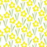 Endless yellow fields of lonely daffodils. Vector seamless colourful simple repeating pattern with one isolated floral motif on the white background Stock Image