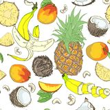 Seamless pattern of whole and pieces of coconut, pineapple, banana and mango. Vector seamless  composition with banana,Pineapple, cashew nuts, coconut, mango Stock Image
