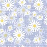 Vector seamless cute beautiful minimalist graphics daisy flower pattern. Stock Photography