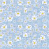 Vector seamless cute beautiful minimalist graphics daisy flower pattern. Royalty Free Stock Photos