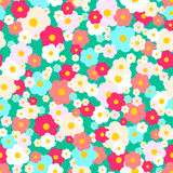 Vector seamless daisy pattern Stock Image