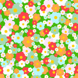 Vector seamless daisy pattern Stock Images