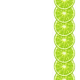 Vector seamless decorative border of lime slice. Citrus Stock Image