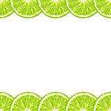 Vector seamless decorative horizontal border of lime slices. Citrus Stock Images