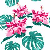 Vector seamless fashionable graphical free hand drawing hibiscus flowers with palm tree monstera leaves print on mint background. Tropical spring summer Vector Illustration