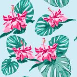 Vector seamless fashionable graphical free hand drawing hibiscus flowers with palm tree monstera leaves print on mint background. Tropical spring summer Stock Photography