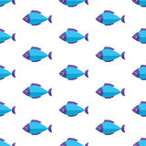 Vector seamless fish pattern. Ocean or aquarium background. Pattern seamless vector illustration. Concept background picture Royalty Free Stock Photography
