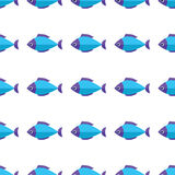 Vector seamless fish pattern. Ocean or aquarium background Stock Images