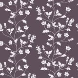 Vector seamless floral background Royalty Free Stock Photos