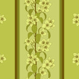 Vector seamless floral background. Stock Photos