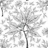 Vector seamless floral grunge pattern Stock Image