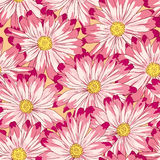 Vector. Seamless floral pattern Stock Photography