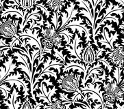 Vector. Seamless floral pattern royalty free stock image