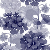 Vector seamless floral pattern. Background with geranium flowers. Seamless pattern. Illustration victorian style. Vintage. Vector. Designs for textiles Royalty Free Stock Image