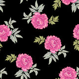 Vector seamless floral pattern. Vector background with the image of garden flowers peony. Seamless pattern. Victorian style. Vintage Royalty Free Stock Photos