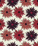 Vector seamless floral pattern with chrysanthemum Royalty Free Stock Image