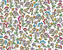 Vector seamless floral pattern. Stock Images