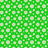 Vector seamless floral pattern with 3d chamomiles. Seamless floral pattern with 3d chamomiles on green background. Vector illustration Vector Illustration