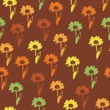 Vector seamless floral pattern with  daisy flowers. Stock Image