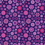 Vector seamless floral pattern with flowers and leaves Stock Images