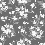 Vector seamless floral pattern with hand drawn flowers. Contains no transparency and gradients Royalty Free Stock Photos