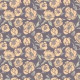 Vector seamless floral pattern Stock Photos