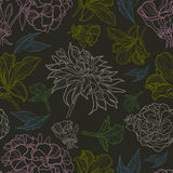 Vector seamless floral pattern with herbarium Royalty Free Stock Photography