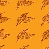 Pattern with leafs Royalty Free Stock Photos