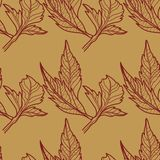 Pattern with leafs Royalty Free Stock Images