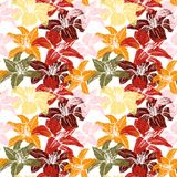 Vector seamless floral pattern with lilies Stock Image