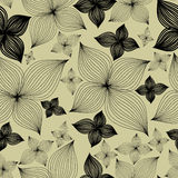 Vector Seamless floral pattern with lilly flower Royalty Free Stock Images