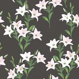 Vector seamless floral pattern Royalty Free Stock Photos