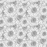 Vector Seamless Floral Pattern, Outline Flowers, Black and White Sketch Illustration, Endless Background. royalty free illustration