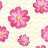 Vector seamless floral pattern with pink cosmos flowers. Vector seamless pattern with watercolor cosmos flowers. Stylish floral texture, illustration with Royalty Free Stock Image