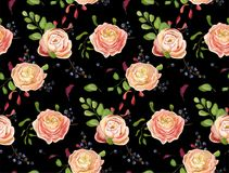 Vector Seamless floral pattern of pink rose ranunculus flowers,. Greenery fern leaf berry.  Hand drawn background in watercolor style. Nature decorative rustic Royalty Free Stock Photography