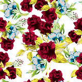 Vector seamless floral pattern with red roses on white backgroun Stock Photos