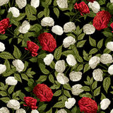 Vector seamless floral pattern with red and white roses on black Stock Photography