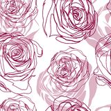 Vector seamless floral pattern with roses Stock Photo