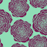 Vector seamless floral pattern with roses Stock Image